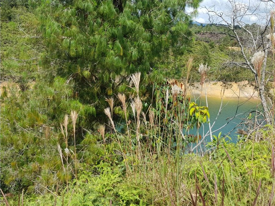 lote con vista a la represa guatape tierra prometida