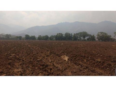 93 manzanas de terreno en teculutan zacapa