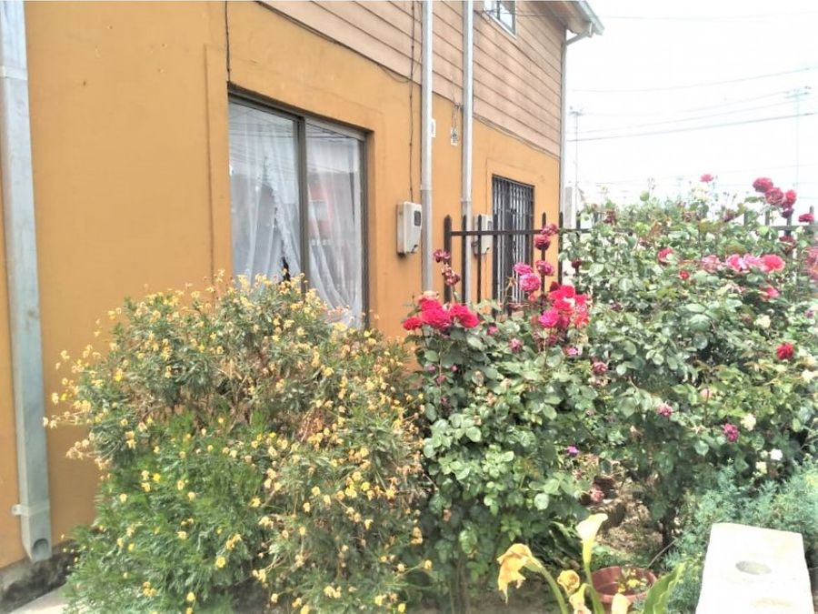 vendo casa con local comercial en parral