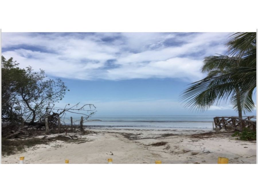 vendo terreno frente al mar isla de holbox