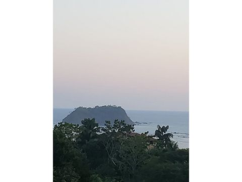 villa morpho