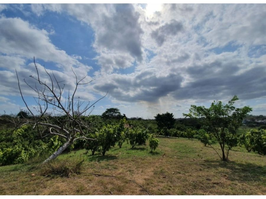 venta finca turistica agroindustrial comuna daular