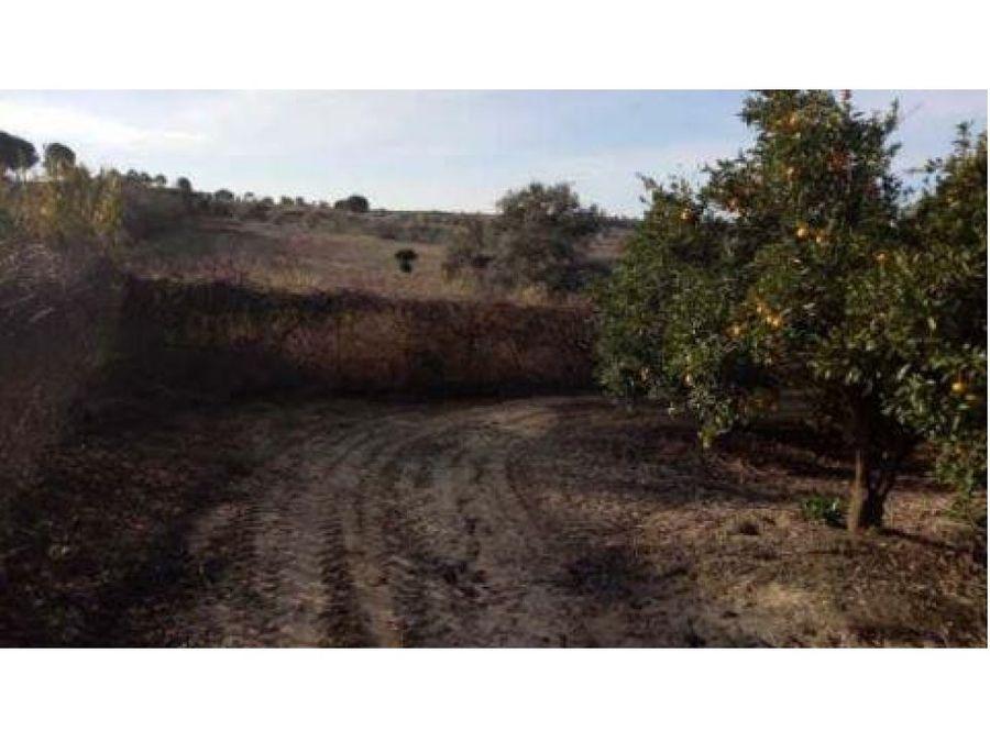 venta de terreno en la palma del condado