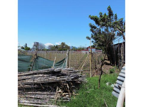 vendo terreno para urbanizar en los sitios de moravia 8356 m2