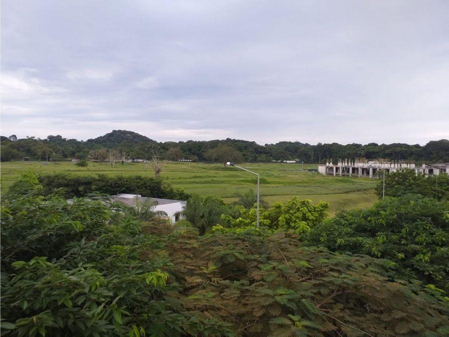 river valley panama pacifico rodeado de naturaleza