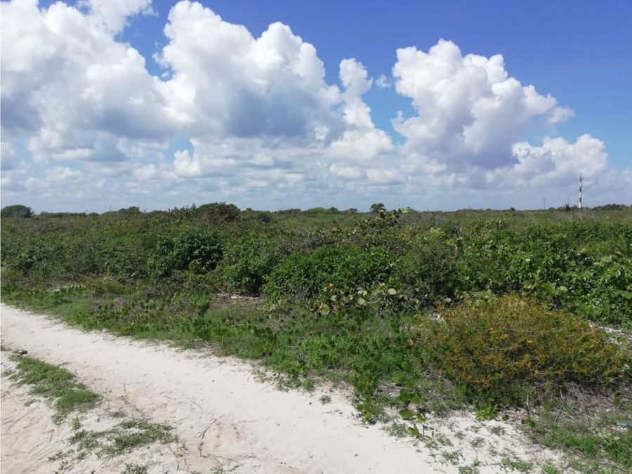 terrenos laterales en san benito yucatan