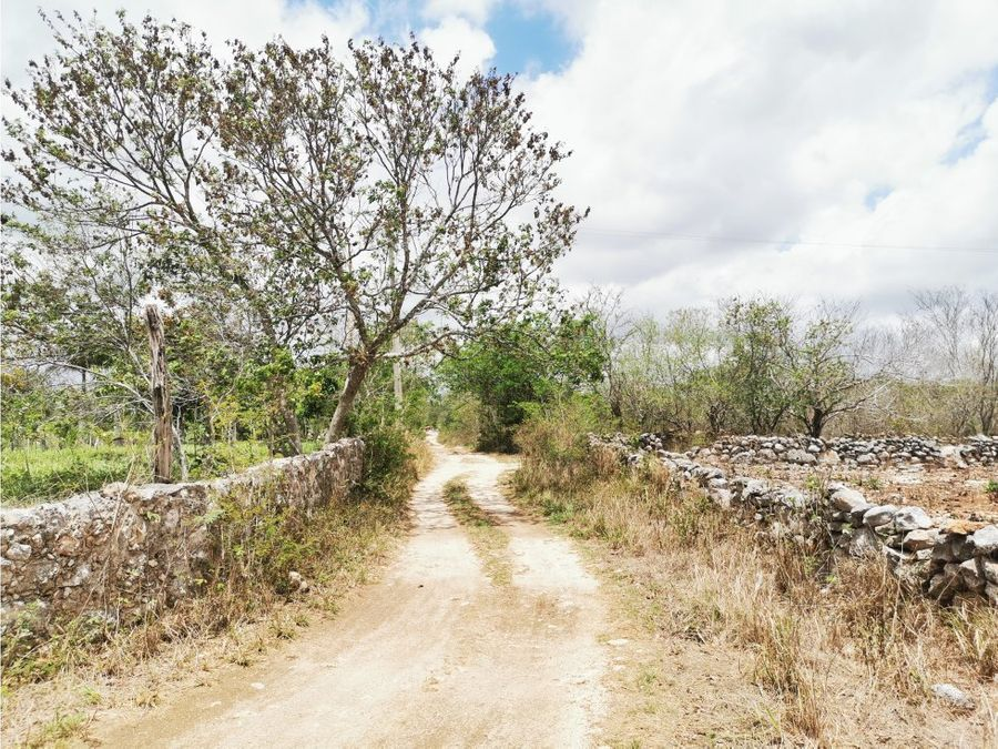se vende terreno en sinanche