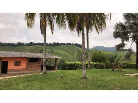 venta terreno 540 hectareas via a puerto berrio