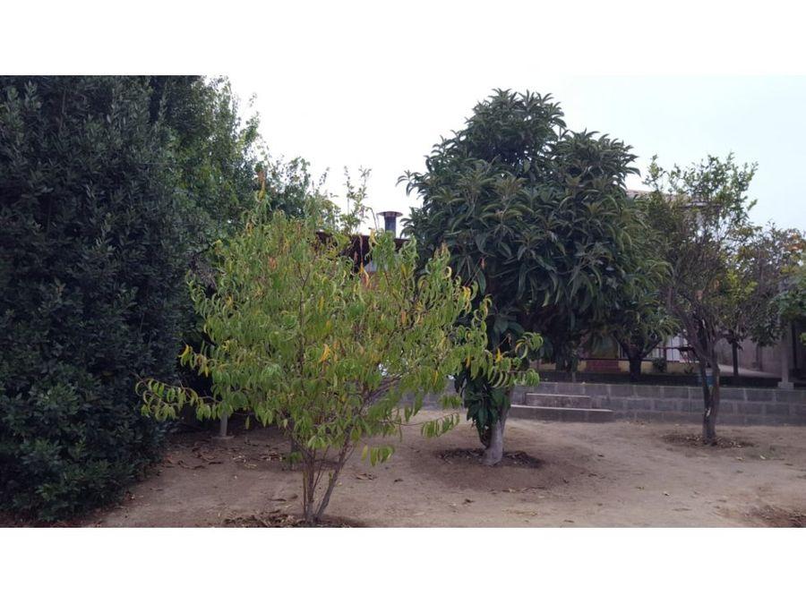 peyronet quilpue