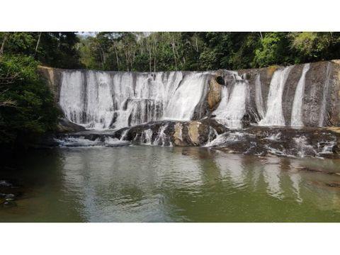 amazing waterfall coffee