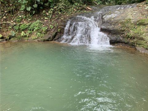 a jewel in san isidro del general costa rica