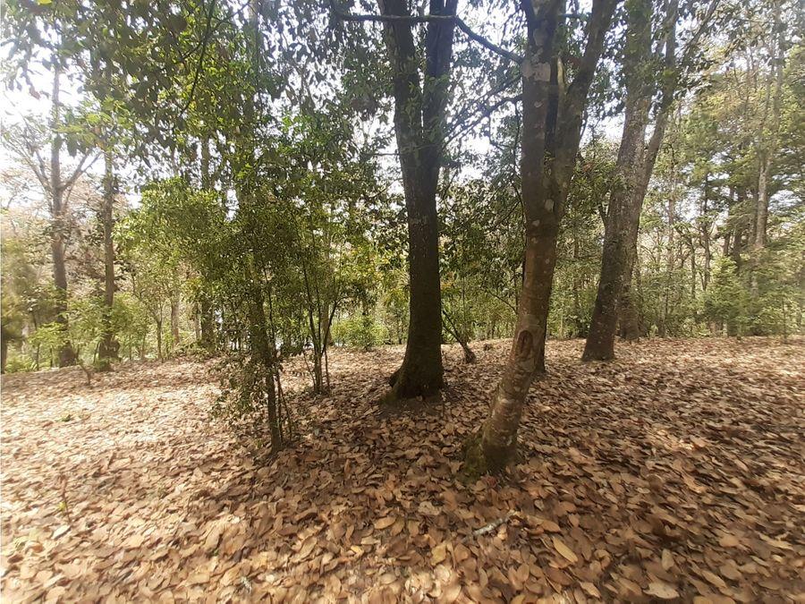 terreno en venta san lucas sacatepequez alameda del bosque