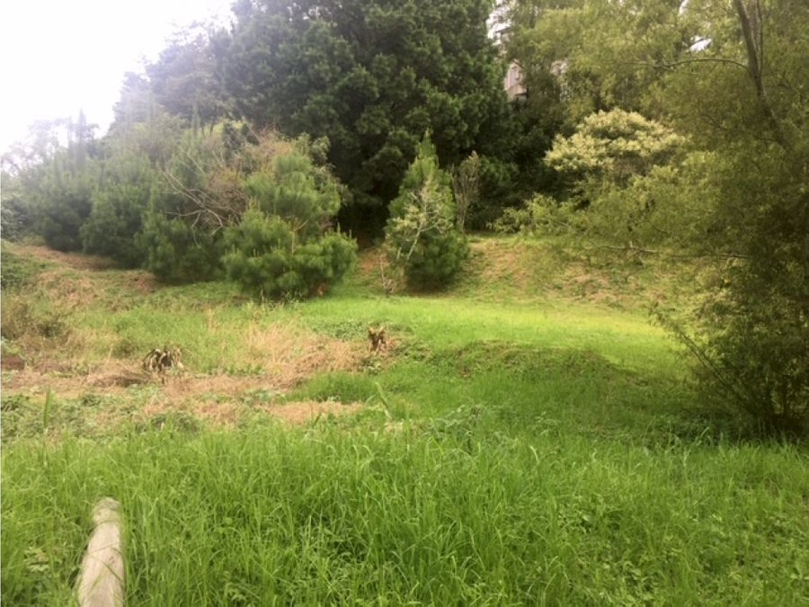 vendo terreno en terravista