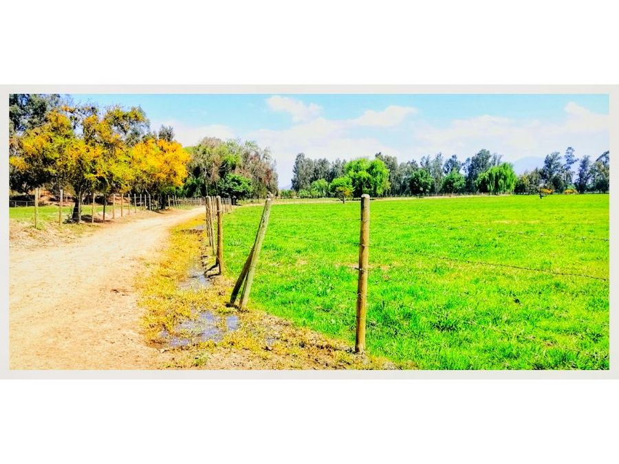 terreno en melipilla 278 hectareas zona bollenar