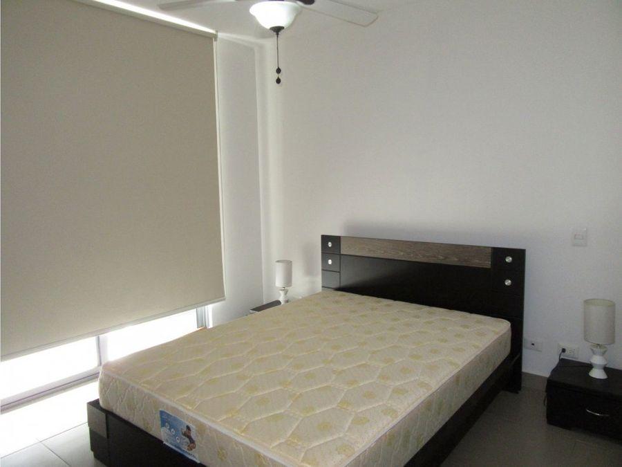 alquiler de apartamento 1 habitacion mosaic