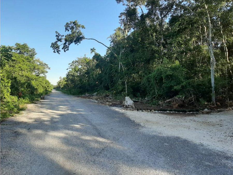 venta terreno 10h boca de cenote puerto morelos
