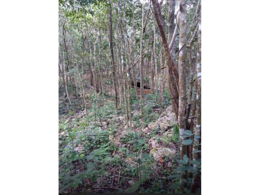 venta 4 h san lorenzo frente 3 cenotes