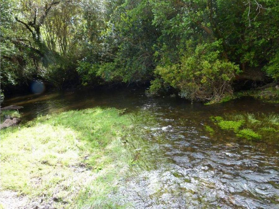 gran terreno en paillaco region de los rios