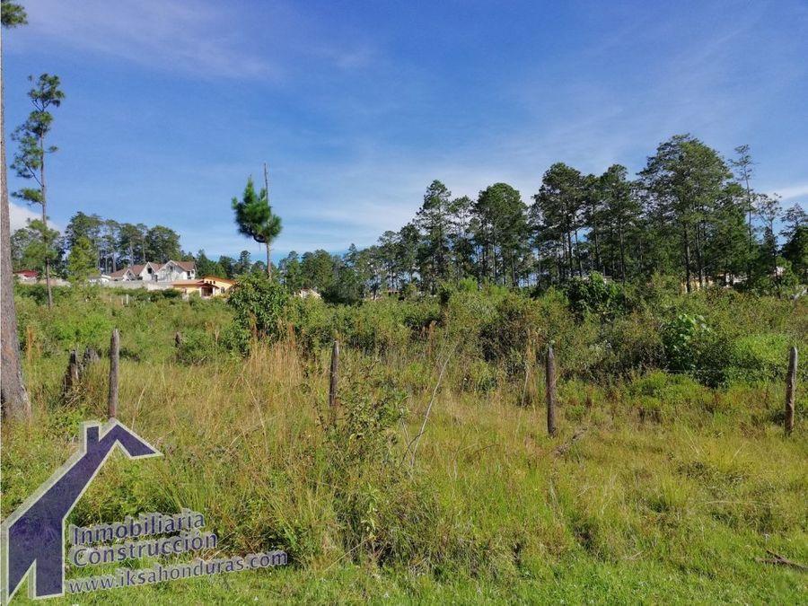terrenos en venta pinares de valle