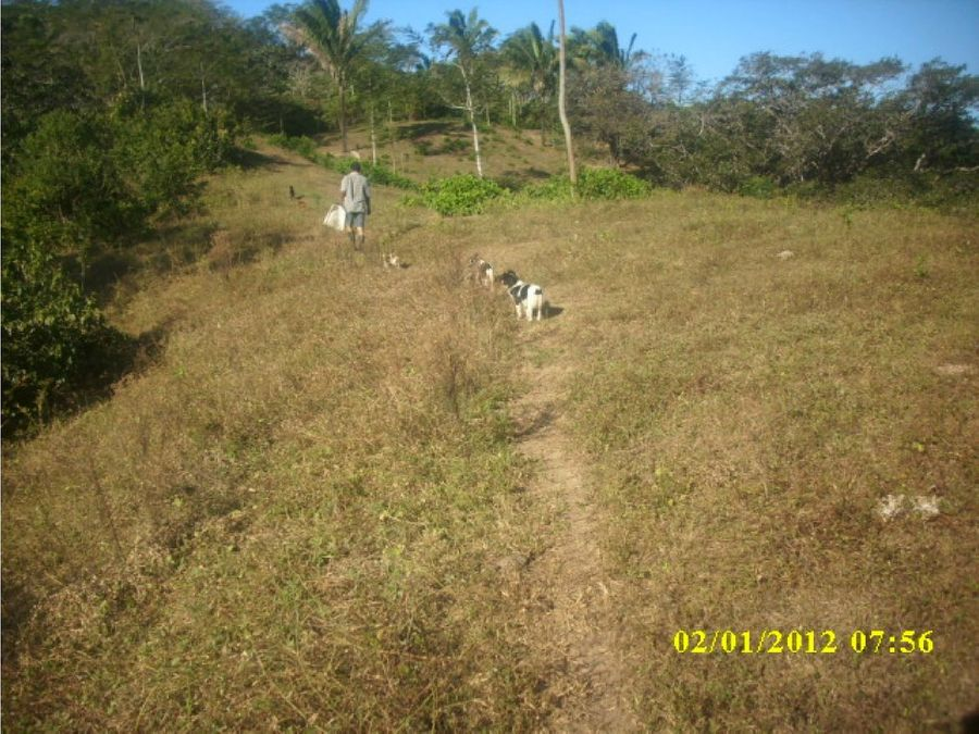 finca sobre carretera nicoya samara guanacaste