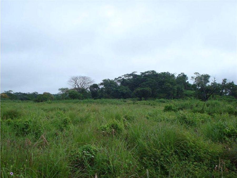 terreno 15 manzanas carretera a puerto quetzal