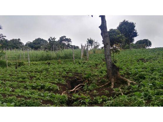 terreno en venta magdalena milpas altas sacatepequez