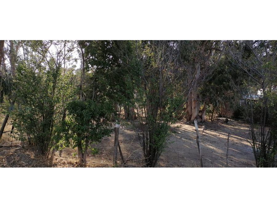 terreno en los pinos