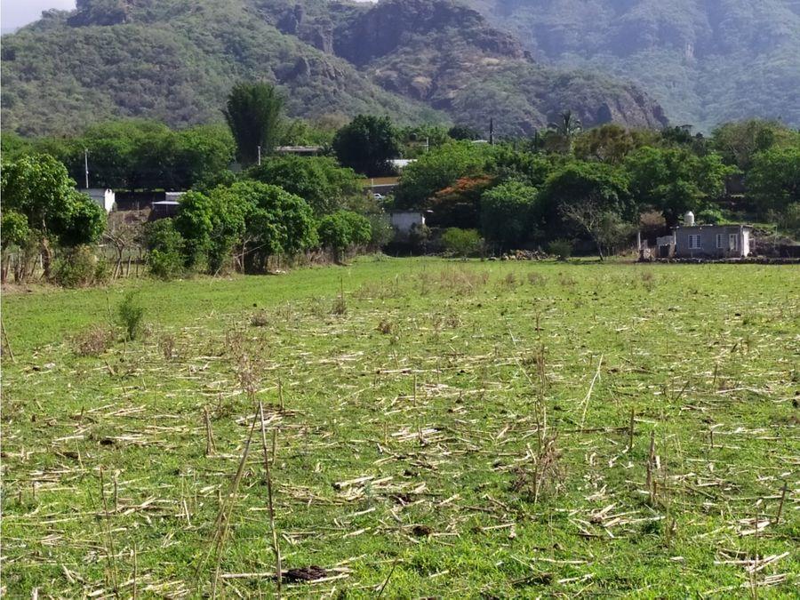 terreno 5000 m2 en san andres de la cal municipio de tepoztlan mor