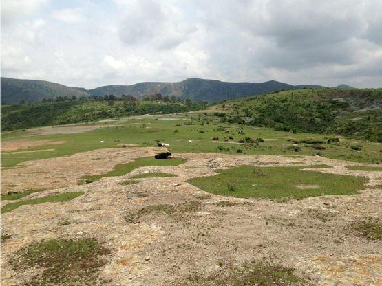 terreno en venta en guanajuato 800 hectareas
