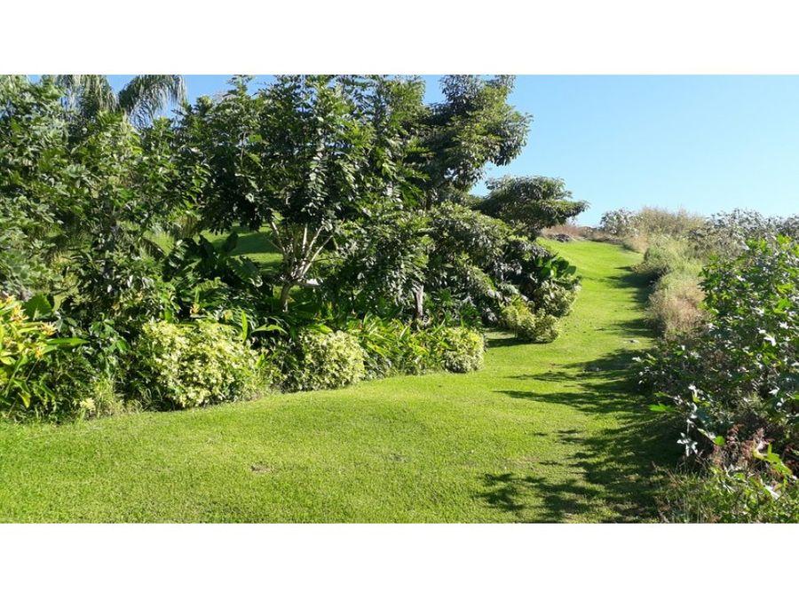 terreno en venta en burgos bugambilias 569m2 l18