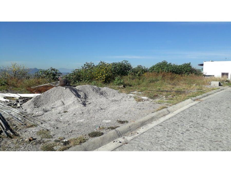 terreno en venta en burgos bugambilias 565m2 l11