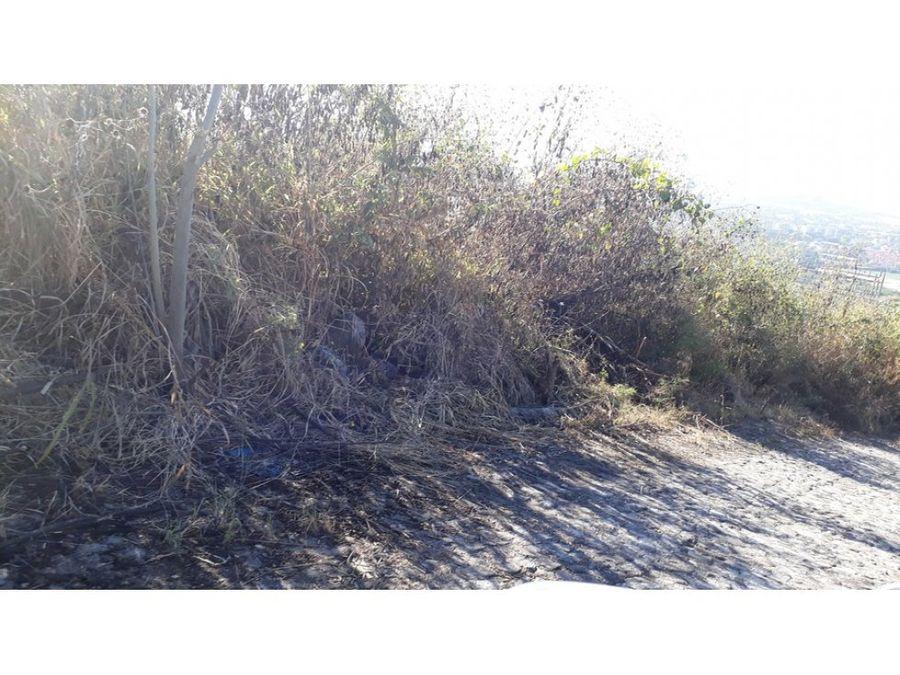terreno en venta en burgos bugambilias 554m2 l50