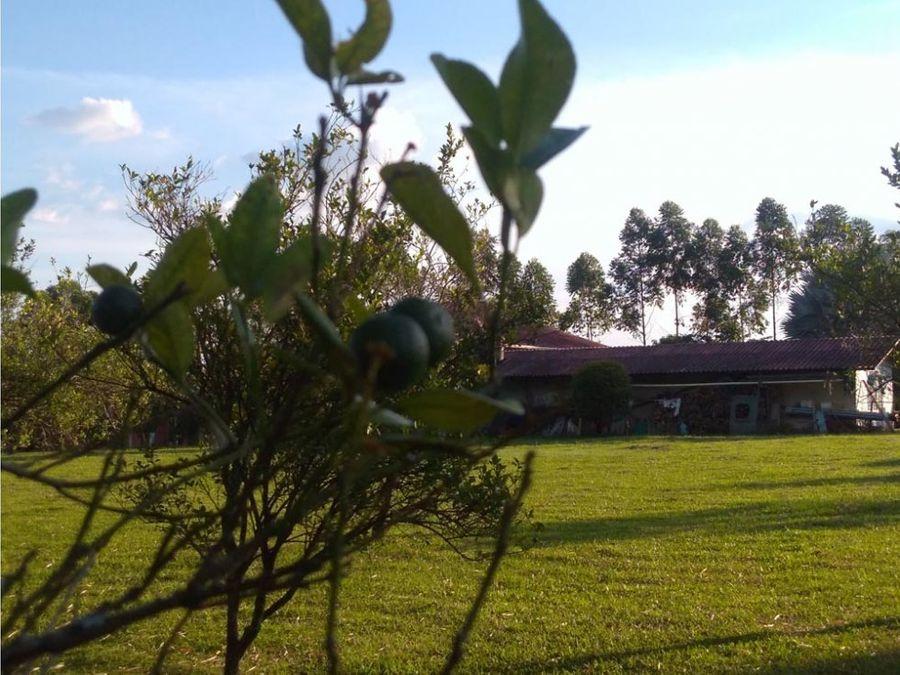 magnifica casa campestre en acacias meta