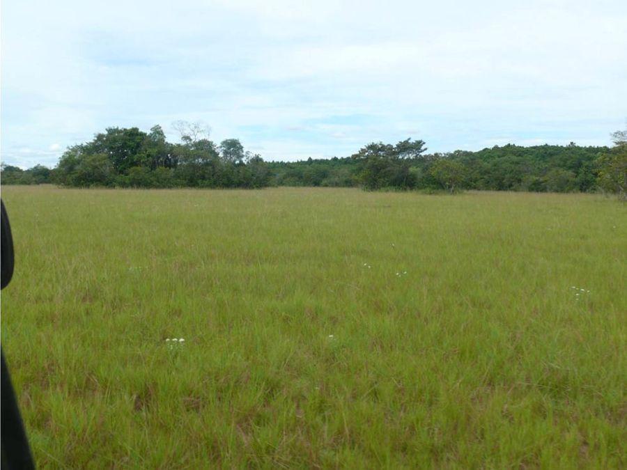 venta de 21152 hectareas sector 14 vichada