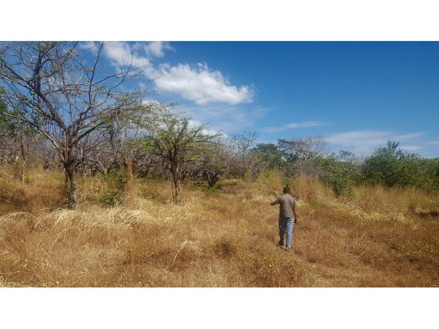 se vende terreno en el moraicito honduras