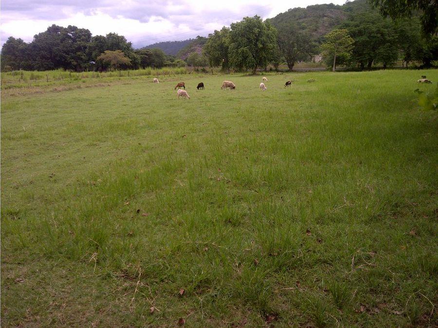 se vende terreno en comayagua honduras