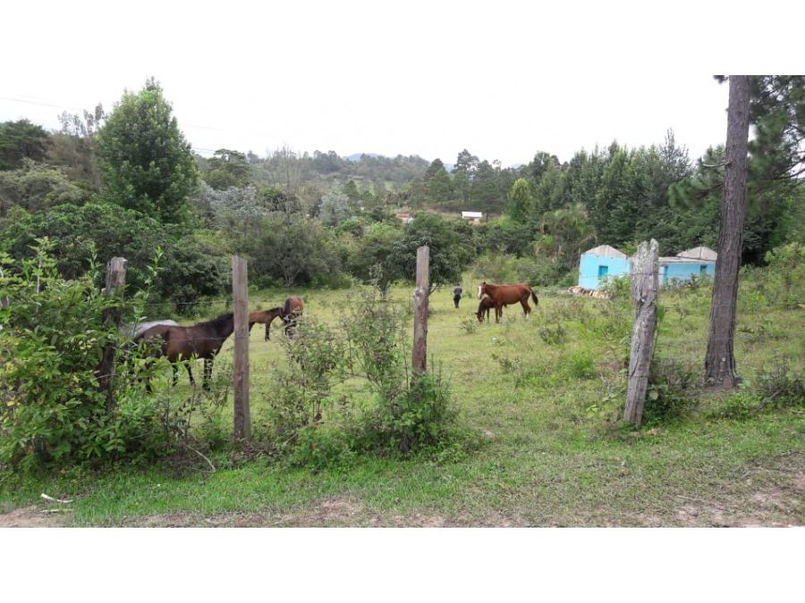 se vende terreno en san matias