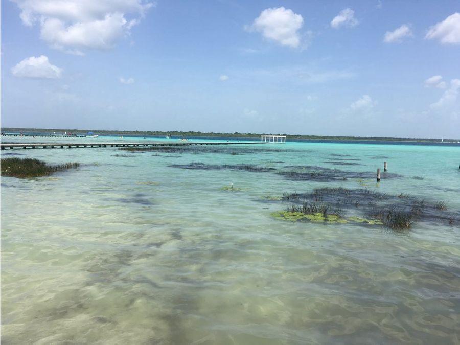 laguna salvaje wild life lagoon