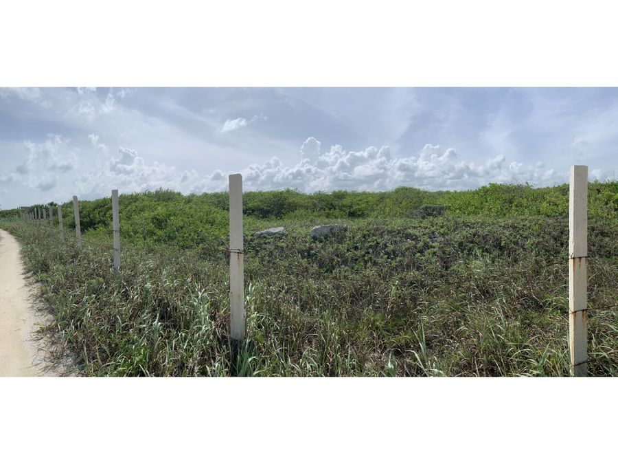 terreno en venta puerto morelos frente mar 6400 m2 960000 usd