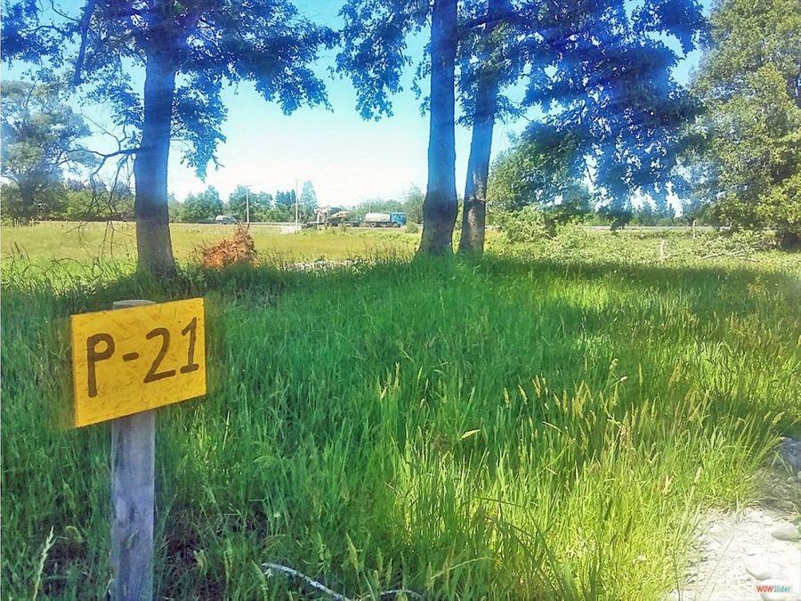 parcelas urbanizadas 5000 m2 minutos lago ranco