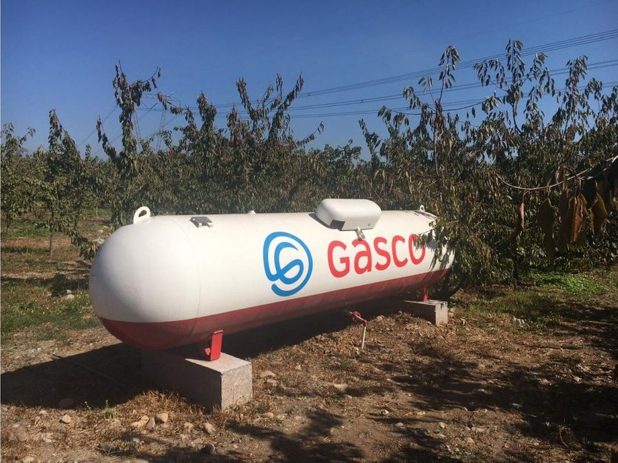 vende campo 12 he en teno productora cerezas exportacion con gran casa