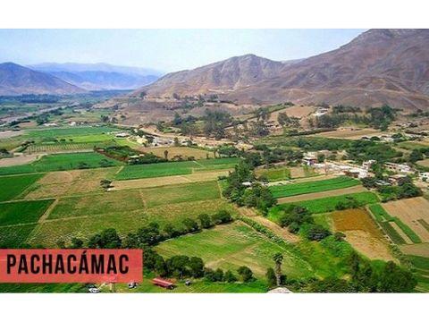 se vende terreno en pachacamac