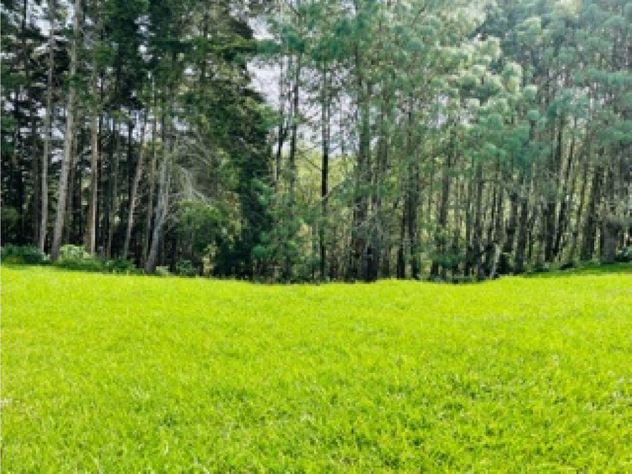 terreno hacienda san angel san jose pinula