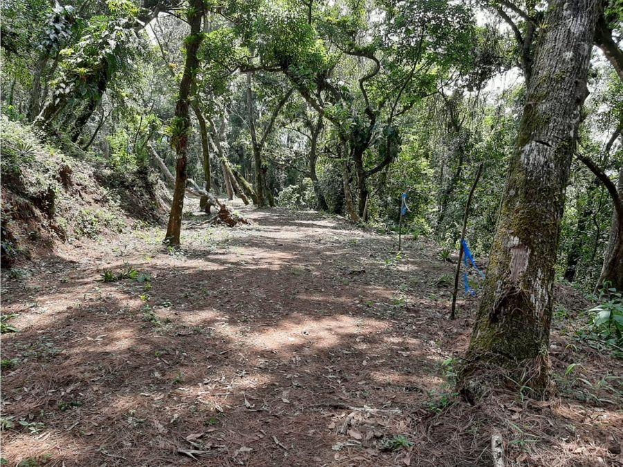 terreno santa rosalia calle casuarinas km 125