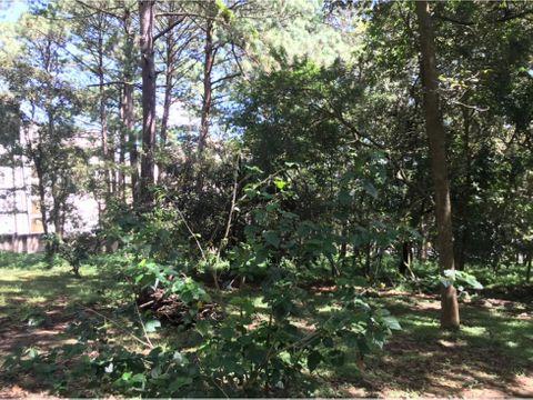 terreno el encinal los pinos desarrollador