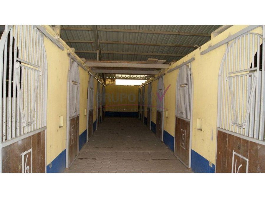 venta rancho crianza de caballos