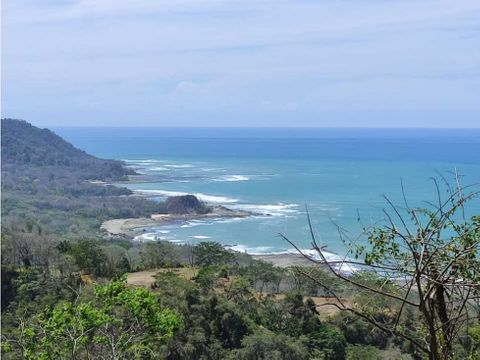 125 hectares of beautiful views commercial use