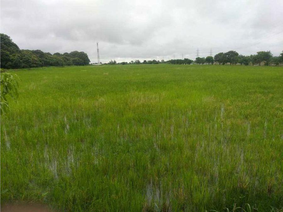 venta de 50000 m2 de terreno de uso industrial