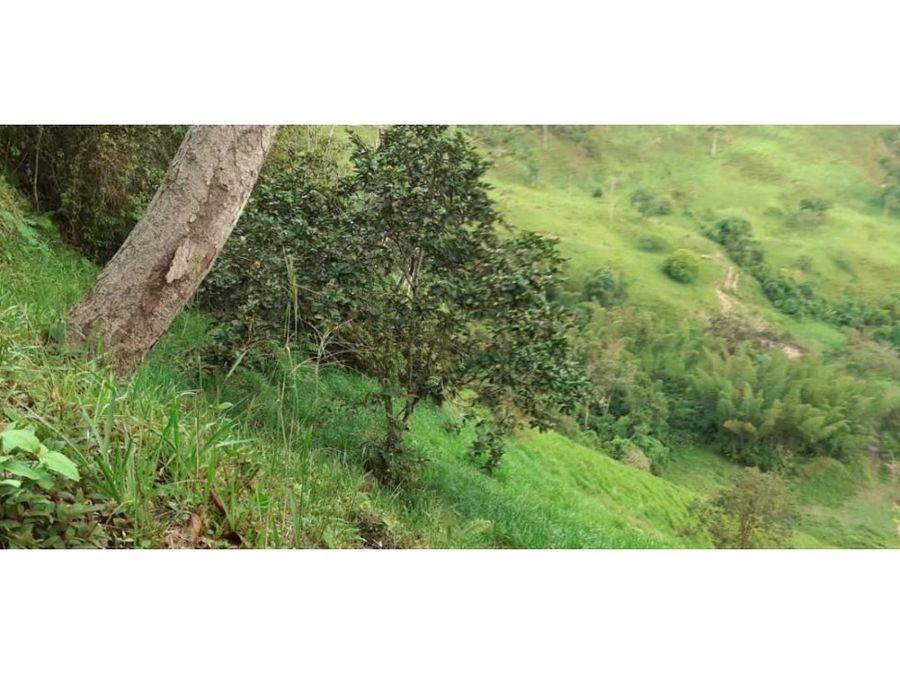 venta de finca en otanche boyaca 250 hectareas