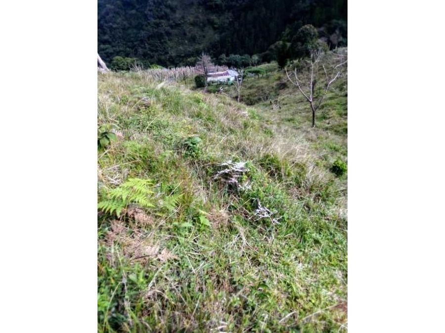 venta finca 16 hectareas via sonson narino
